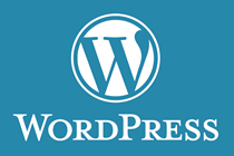 wordpress Website design & cms